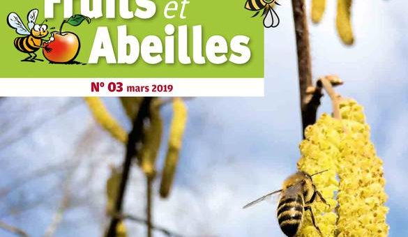 Article Hymenoptera dans la revue «Fruits et Abeilles» mars 2019
